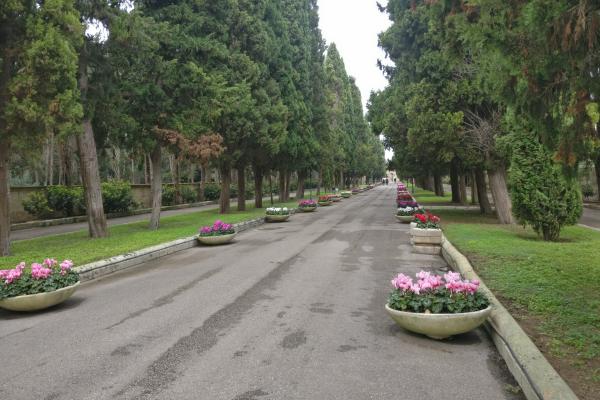 cimitero viale per sito